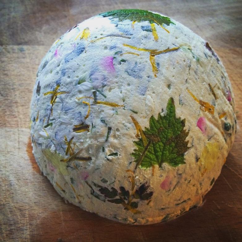 My beautiful handmade wild cheese