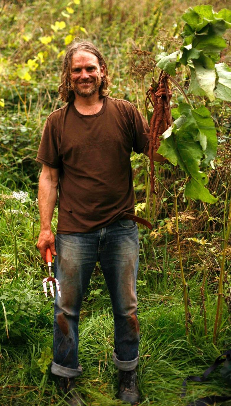 Burdock roots